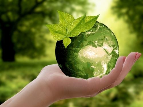 Direito Ambiental II (Intermediário)