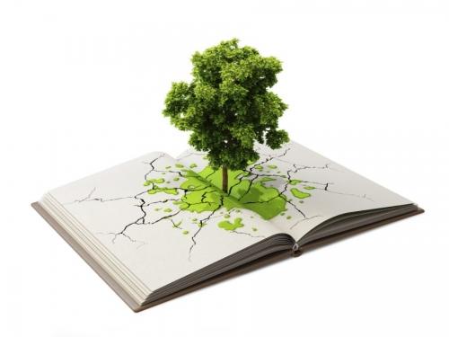 Educação Ambiental no Licenciamento: Elaboração do PEA segundo a DN COPAM 214/2017
