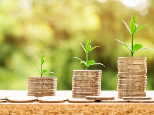 Análise de Sustentabilidade, Competitividade e Riscos do Empreendimento