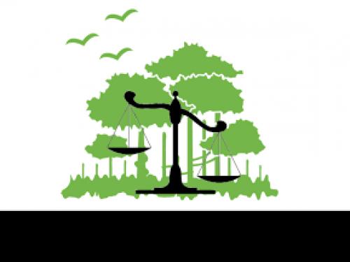 Alterações no Licenciamento Ambiental em Minas Gerais
