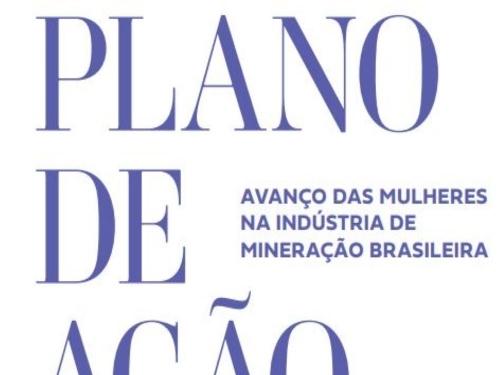 WIM Brasil - Plano de Ação