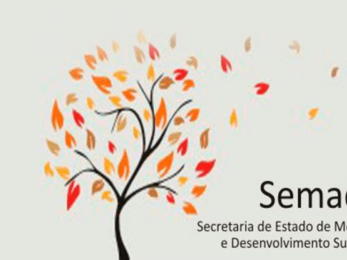 Cartilha de Orientações SEDE/SEMAD - MG
