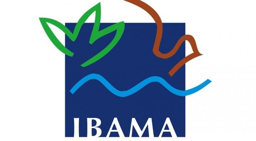 Ibama divulga resultado preliminar do Programa de Conversão de Multas Ambientais