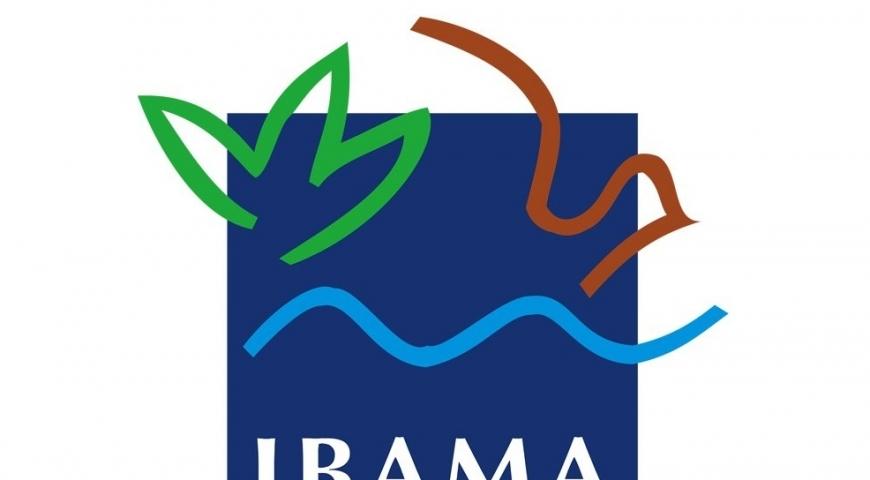 Publicada a Instrução Normativa IBAMA 08, de 20 de fevereiro de 2019